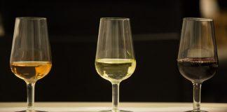 Vinhos Senacweb 1