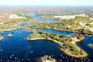 Rio Okavango
