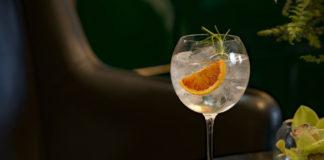 Receita de gin