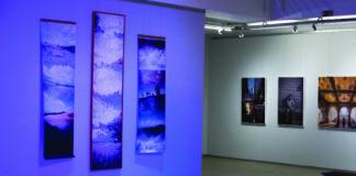exposições
