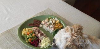 alimentação