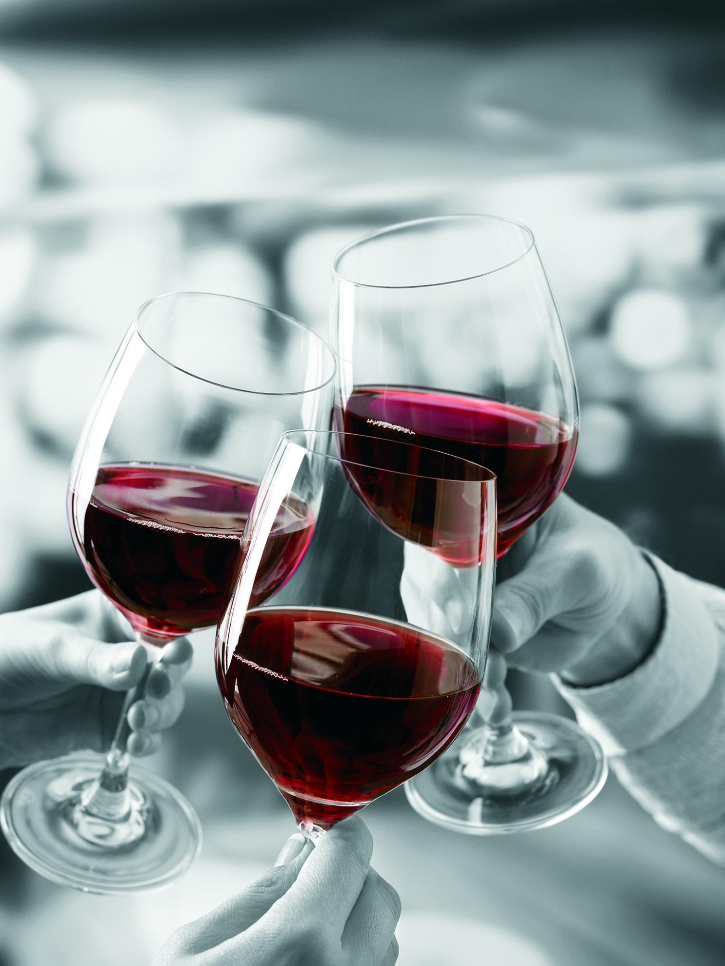 Festival de Vinhos