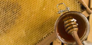 mel durante a quarentena